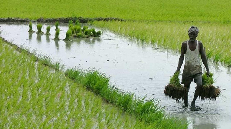 PM किसान: अप्रैल-जुलाई की किस्त आने में लग सकता है और वक्त